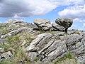 Perched boulders, NNE ridge Gairich - geograph.org.uk - 188018.jpg