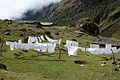 Peru - Salkantay Trek 104 - clothesline (7343174816).jpg
