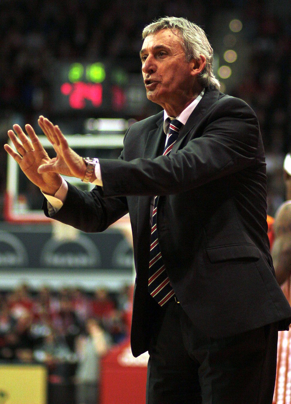 Pesic-Coach-Basketball