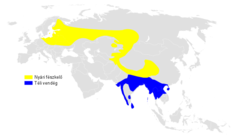 Phylloscopus trochiloides distribution map.png