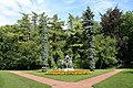 Picea pungens Glauca Pendula JPG1b.jpg