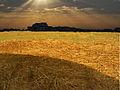 PikiWiki Israel 22219 Geography of Israel.jpg