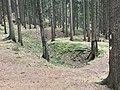 Pingenzug im Hohen Forst.jpg
