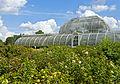 Plantings behind Palm House, Kew Gardens.jpg