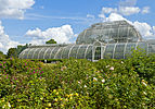 Plantings behind Palm House, Kew Gardens.jpg