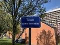 Plaque Square Sainte Geneviève - Rosny-sous-Bois (FR93) - 2021-04-15 - 2.jpg