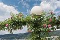 Poertschach Johannes-Brahms-Promenade Laterne mit Kletterrosen 04062015 4439.jpg