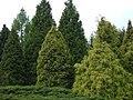 Poland. Warsaw. Powsin. Botanical Garden 034.jpg
