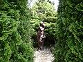Poland. Warsaw. Powsin. Botanical Garden 075.jpg