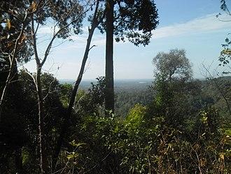Ratanakiri Province - Jungle in Ratanakiri Province