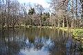 Prameniště Teplé, small pond.jpg