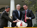 President George W. Bush pardons a turkey 2008.jpg