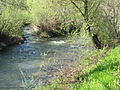 Prosca Creek and Gradaščica River.JPG