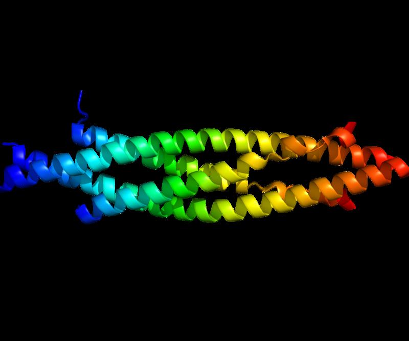 Protein IKBKB PDB 3BRT.png