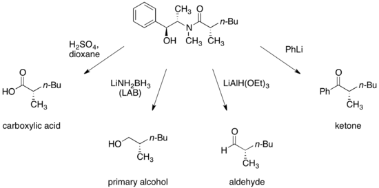 Pseudoephedrine derivatives.png