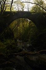 Puente sobre el río Eume.jpg