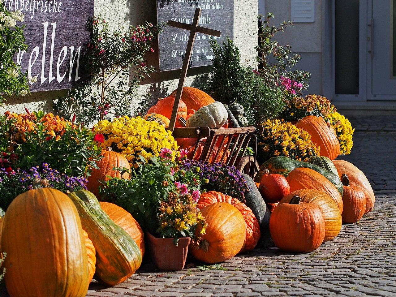 File:Pumpkin Decoration.jpg - Wikimedia Commons