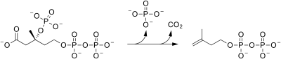 Pyrophosphomevalonate decarboxylase reaction (2).svg