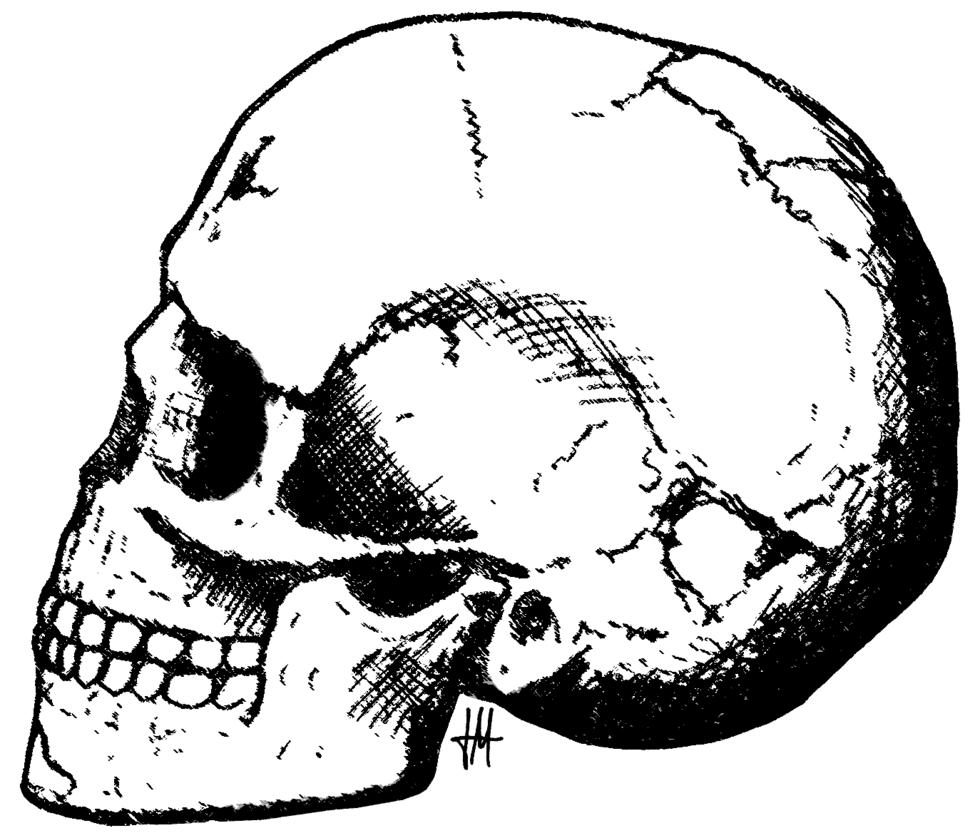 Qafzeh skull-11