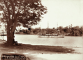 Queensland State Archives 2198 SM Schiff Albatros on the Brisbane River 1896.png