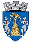Coat of arms of Baia Sprie