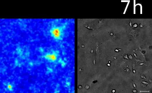 Radioluminescence dating website