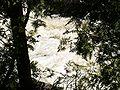 Ragged Falls 4 db.jpg