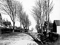 Rainier Ave, Port Gamble, Washington, February 26, 1907 (WASTATE 1051).jpeg