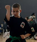 Ramstein holds youth martial arts tournament 150228-F-EN010-048.jpg