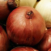 Red onion centered.jpg