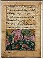 Regno moghul di akbar, storie di un pappagallo (tuti-nama) 02 la scimmia parla con le linci che vogliono prendere la tana del leone, 1560 ca.jpg