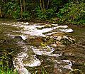 Reka Moravica u Sokobanji.JPG