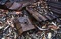 Remains of hut Byrnes Swamp.jpg