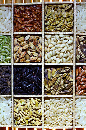 Rice Diversity. Part of the image collection o...