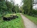Ridgeway in Tring Park - geograph.org.uk - 575977.jpg
