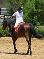 Riding a Horse Backwards 1110827.jpg
