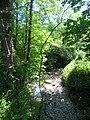Rio Mampodre , afluente del Rio Piloña. - panoramio.jpg