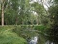 River Avon near Amesbury - geograph.org.uk - 1399507.jpg