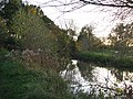 River Devon - geograph.org.uk - 77463.jpg
