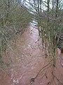 River Leadon upstream - geograph.org.uk - 658997.jpg
