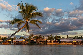 River bank of Don Khon with stilt wooden houses and leaning Arecaceae at golden hour from Don Det Laos.jpg