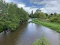Rivière Cousin vue depuis Pont Cousin - Vault-de-Lugny (FR89) - 2021-05-17 - 1.jpg