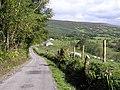 Road at Glebe - geograph.org.uk - 1482738.jpg