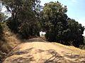 Roads (10639931964).jpg
