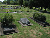 Rob Muldoon grave distant.jpg