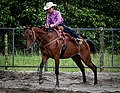 Rodeo in Panama 28.jpg