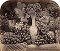 Roger Fenton Fruit and Flowers, 1860 Paul Mellon Fund.jpg