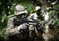 Royal Marines Jungle Training in Ghana MOD 45157493.jpg