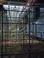 Ruhrmuseum - 17 Meter Ebene - Industrienatur100506.jpg