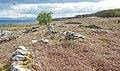 Ruined walls at Port-na-Caranean (geograph 2919495).jpg